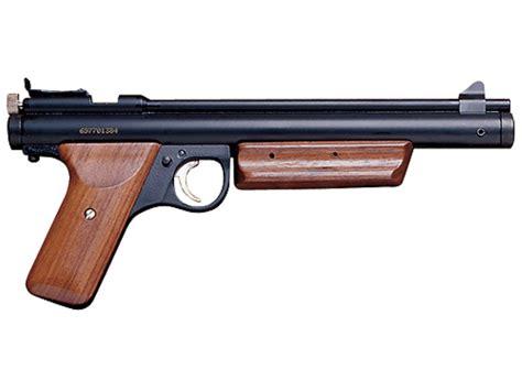 Best Pump 22 Pellet Rifle