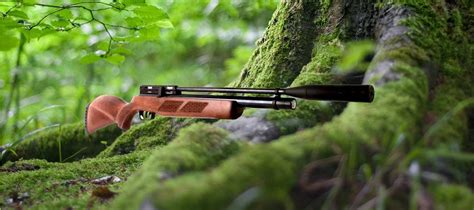 Best Quality Air Rifle For Coyotes