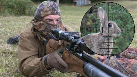 Best Rabbit Shooting Air Rifle