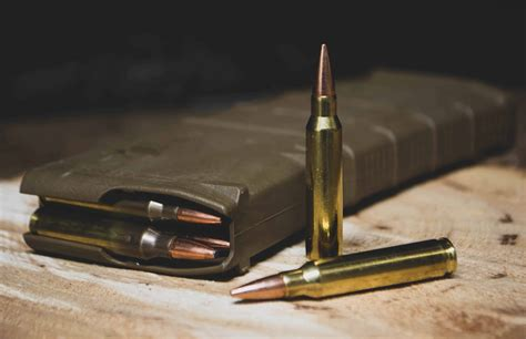 Best Rifle Caliber For Deer And Moose