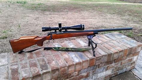 Best Scope For 22 250 Rifle