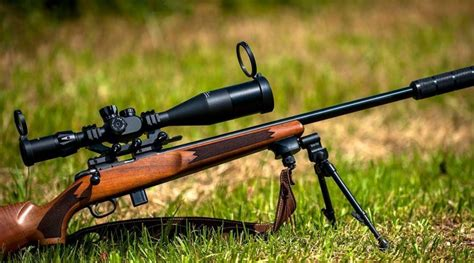 Best Scoped Rifles Sniper Bf1 And Best Shooting Low End Rifles