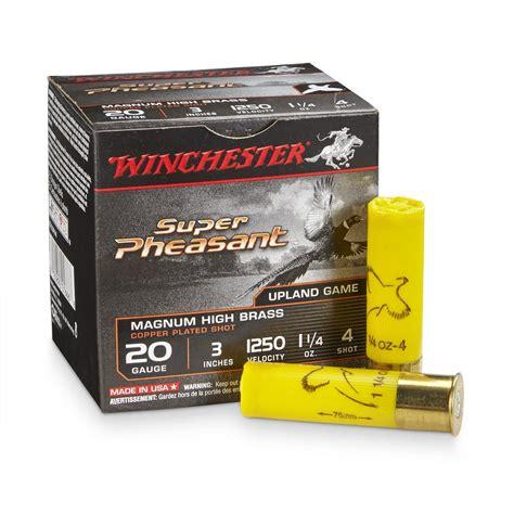 Best Shotgun Shells For Hunting