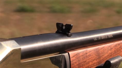 Best Single Shot Rifle For The Money