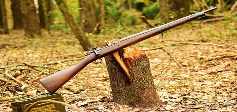 Best Surplus Hunting Rifle