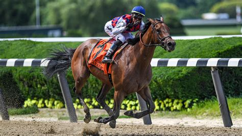 Best Way To Bet On Horses Uk