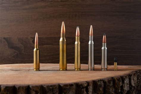 Best Wild Boar Rifle Caliber