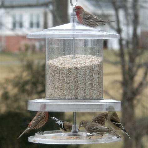 Best hopper bird feeder Image
