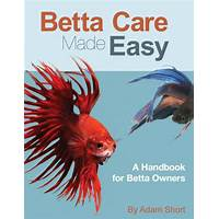 Betta care made easy free tutorials