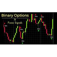 Binary options signals guides