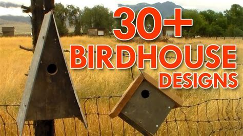 Birdhouses ive made outdoors with trav Image