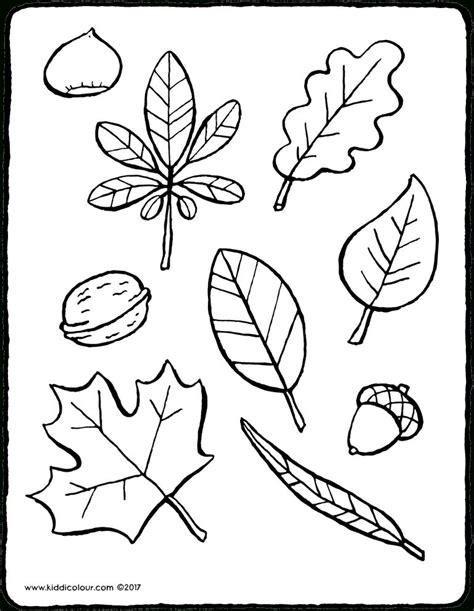 Blätter Malvorlagen Herbst