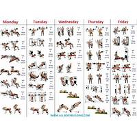 Bodybuilding blueprint for beginners discounts