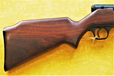 Bolt Action Or Semi Auto 22 Rifle