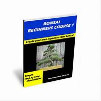 Bonsai beginners course 1 tutorials