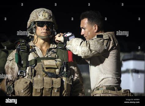 Bravo-Company Bravo Company 1st Battalion 1st Marines.