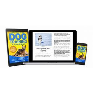 Brightdog academy: online dog and puppy training with proven results! brightdog academy: online dog and puppy training with proven results! promo code