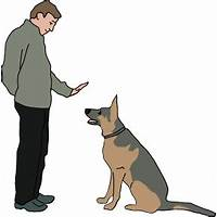 Coupon code for brightdog academy professional online dog training membership site