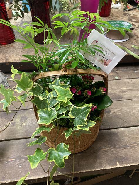 British Basket Gardens Image