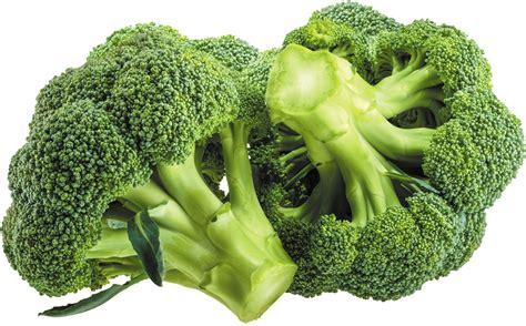 Broccoli Vegetable Watermelon Wallpaper Rainbow Find Free HD for Desktop [freshlhys.tk]