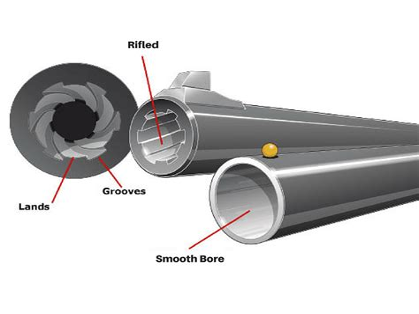 Buckshot Out Of Rifled Barrel