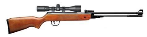 Budget Air Rifle For Pest Control