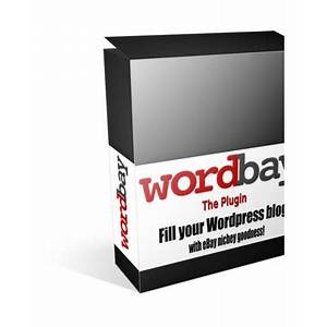Coupon for build a niche store make money by building ebay affiliate websites