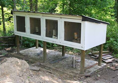 Build a rabbit cage outdoor Image