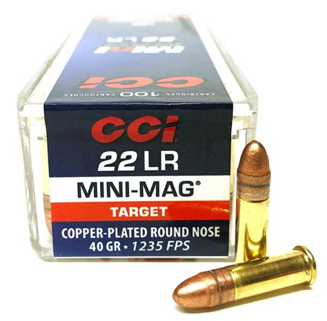 Buy 22 Mini Mag Ammo