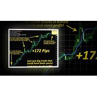 Coupon for buy sell trend detector brand new unique forex tool!