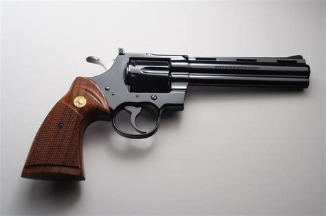 Buying A Gun Store