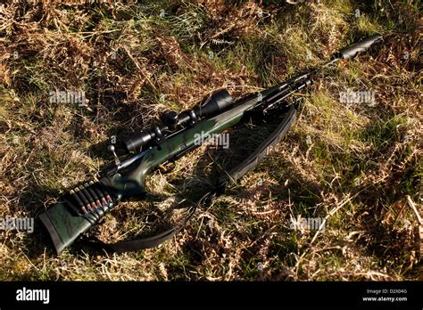 Buying Hunting Rifle In England