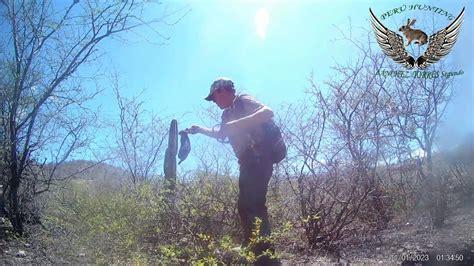 Caceria De Conejos Con Rifle De Aire