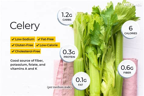 Calories In Celery Watermelon Wallpaper Rainbow Find Free HD for Desktop [freshlhys.tk]
