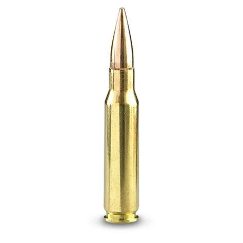 Can Gun Chambered For 308 Shoot 7 62 Nato Ammo