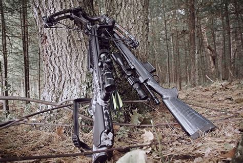 Can I Hunt Deer With A 22 Rifle