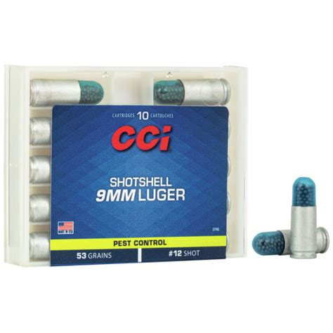 Can I Send Reloaded Ammo Through Postal Service