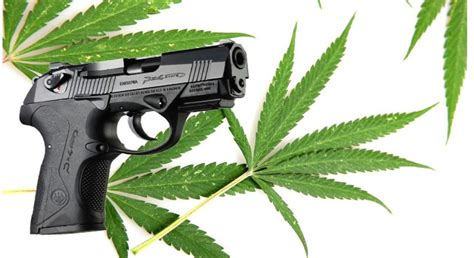 Can You Buy A Handgun In State Of Illinois