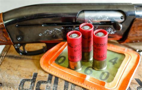 Can You Kill A Bear With A Shotgun Slug