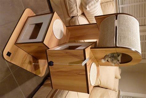 Cat Furniture Watermelon Wallpaper Rainbow Find Free HD for Desktop [freshlhys.tk]