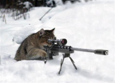 Cat Sniper Rifle