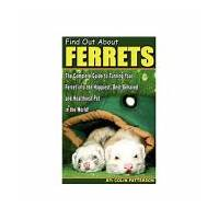 Chameleon care guide only product in booming niche 75% commissions online tutorial