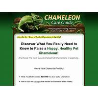 Chameleon care guide only product in booming niche 75% commissions programs