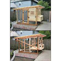 Chicken coop plan collection experience