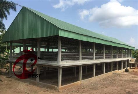 Chicken houses design zone Image