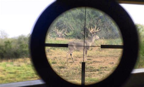 Choosing A Rifle Scope Deer