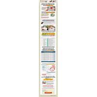 Completa encuestas por dinero spanish version of takesurveysforcash tips