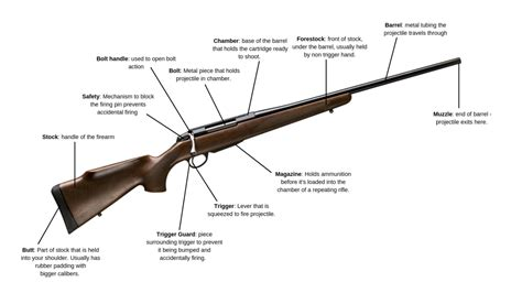 Components Of Bolt Action Rifle Accuracy