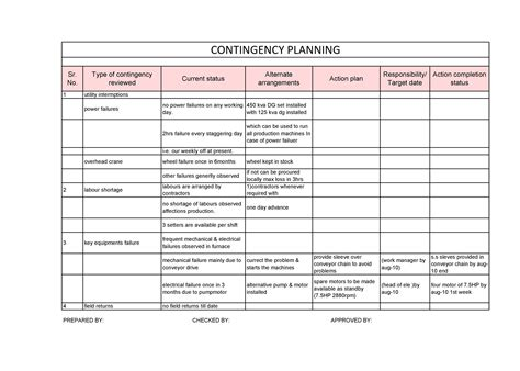Contingency Plan Table Example