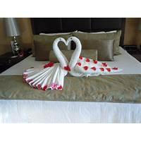 Buy cruise ship towel folding towel origami